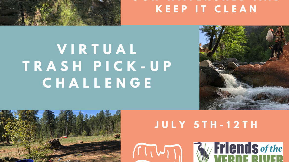 Virtual Trash Pick-Up Challenge- July 5th-12th